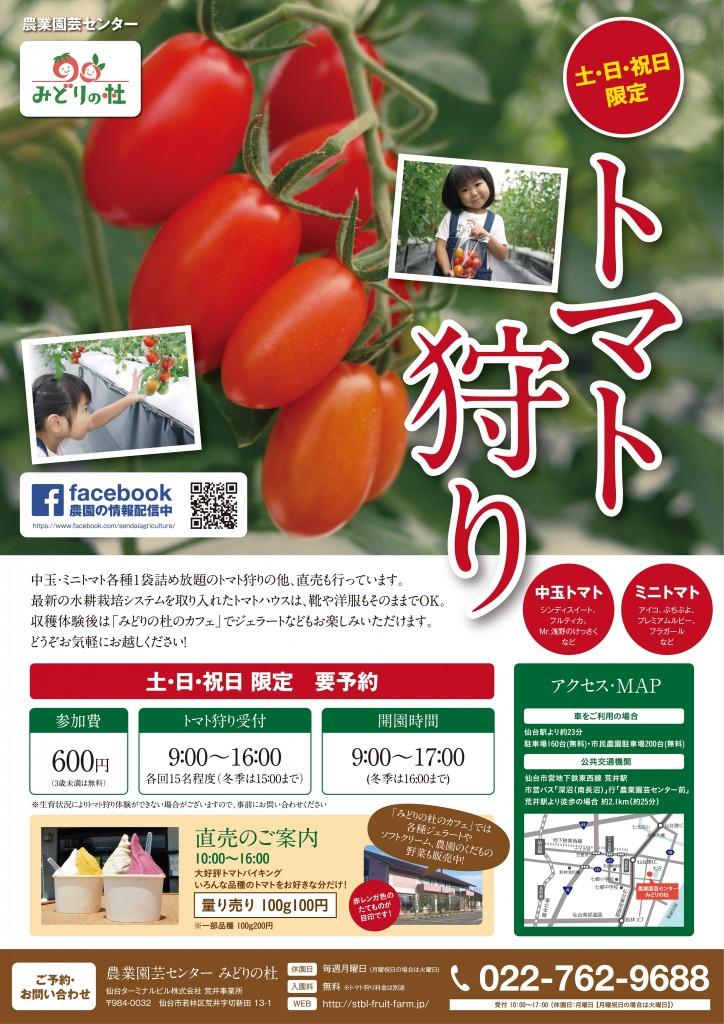 1708農業園芸センタートマト狩り-最終-2ol_resize