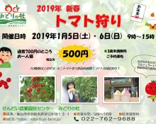 新春企画 2019年1月5日・6日はトマト狩りが500円!!